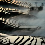 Rizières en terrasses à Yuanyan (Yunnan), 1993